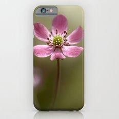 Hepatica iPhone 6s Slim Case