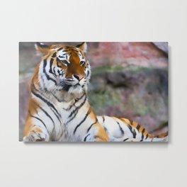 Regal Tiger Metal Print