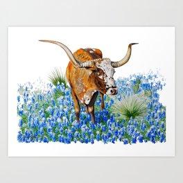 Texas Longhorn Art Print