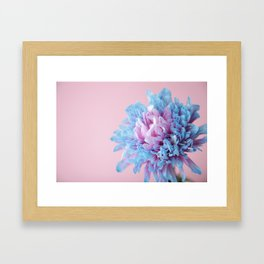 pastels1 Framed Art Print