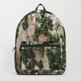 Birch II Backpack