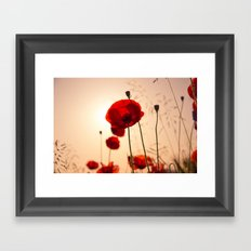 Red poppy flowers Framed Art Print