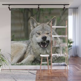 Wolf_012_by_JAMFoto Wall Mural