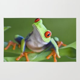 Red-eyed Tree Frog Rug