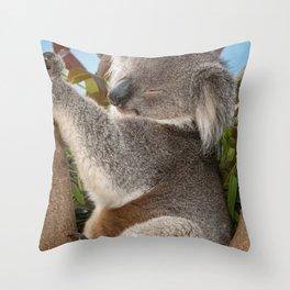 12,000pixel - 500dpi, High Quality Photograph - Sleeping koala Bear Throw Pillow