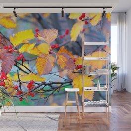 Classy Hawthorn Berries In Autumn Wall Mural