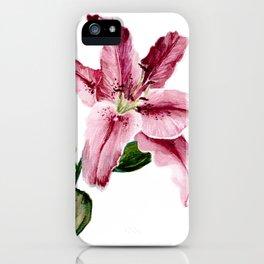 Stargazer Lily iPhone Case