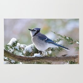 Look Skyward Blue Jay Rug