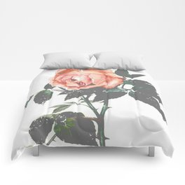 Thorned Rose Comforters
