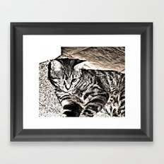 lost eye Framed Art Print