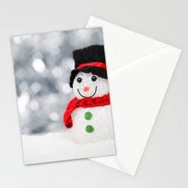 Christmas Photography - Mini Snowman Stationery Cards