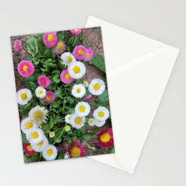 Wildflowers blooming in Boseong tea house yard in Boseong, Jeollanam-do. korea Stationery Cards