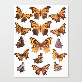 The Butterfly Book Collage I Canvas Print