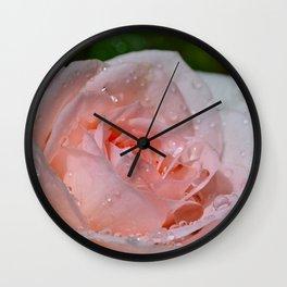 Pink rose and raindrops Wall Clock