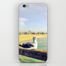 Lazy ass seagull. iPhone & iPod Skin