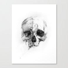 Skull 46 Canvas Print