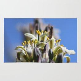Ivory Hesperaloe Parviflora Flower On Brilliant Sky Blue Rug