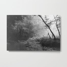 A Quiet Morning Metal Print