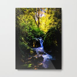 Forest Enchantment Metal Print