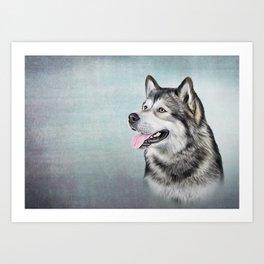 Drawing Dog Alaskan Malamute Art Print