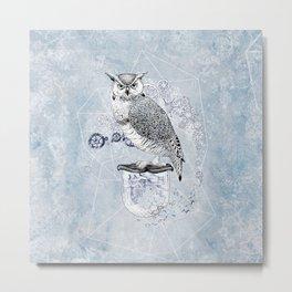 Owl Theory Metal Print