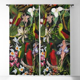 Vintage & Shabby Chic - Black Tropical Parrot Night Garden Blackout Curtain