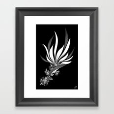 Bird of Paradise Framed Art Print