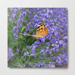 Butterfly Gliding Away Metal Print