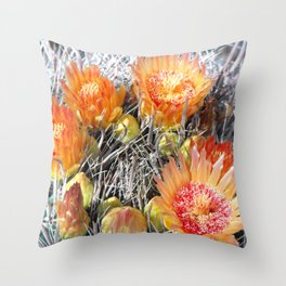 Barrel Cactus in Bloom, Yellow Flowers and Fruit Throw Pillow