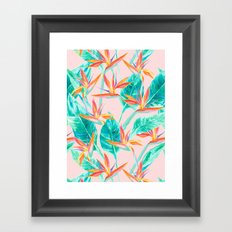 Birds of Paradise Blush Framed Art Print