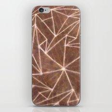 Spinny 2 iPhone & iPod Skin