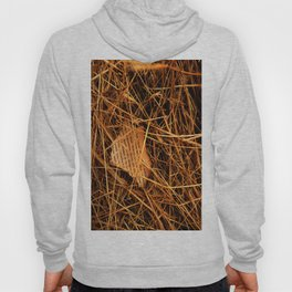 Lost Articles Hoody
