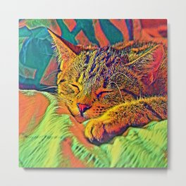AnimalColor_Cat_ 007_by_JAMColors Metal Print