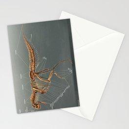 Carnotaurus Skeleton Study Stationery Cards