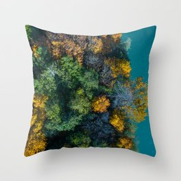 Aerial Study 4 Throw Pillow