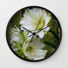 Cereus Morning  Wall Clock