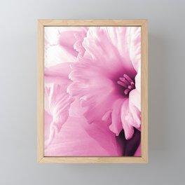 Spring Pink Framed Mini Art Print