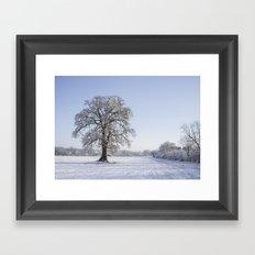 Snowy Oak. Framed Art Print