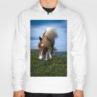 pony Hoodies featuring Shetland pony by Paul J Davis Photography