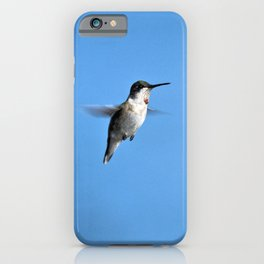 Juvenile Ruby-Throated Hummingbird iPhone Case