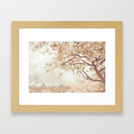 Cherry Tree Garden Framed Art Print