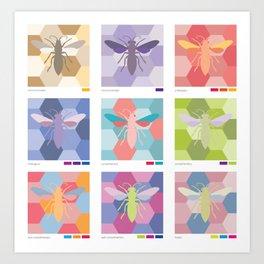color schemes poster Art Print
