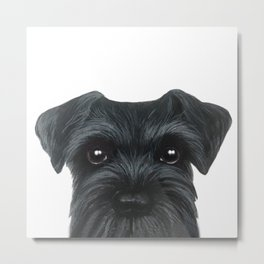 New Black Schnauzer, Dog illustration original painting print Metal Print