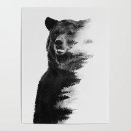 Observing Bear Poster