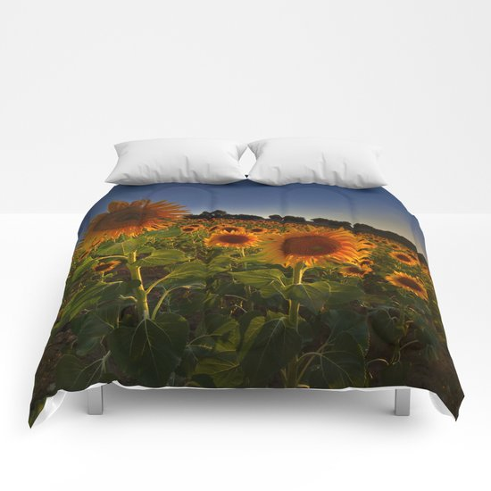 """Sunflowers following the sun"" Comforters"