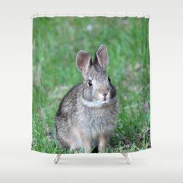 Bunny 2 Shower Curtain