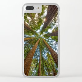 Redwood Forest Canopy Clear iPhone Case