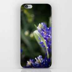 Blue Morning Dew iPhone Skin