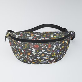 Abstract 377 Fanny Pack