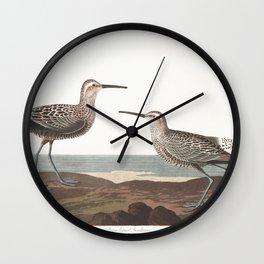 Long legged sandpiper, Birds of America, Audubon Plate 344 Wall Clock